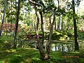 Historic Monuments of Ancient Kyoto (Kyoto, Uji and Otsu Cities)-122736.jpg