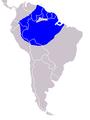 Hoatzin (Opisthocornus hoazin) world.png