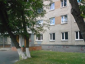 Department of Aeromechanics and Flight Engineering of MIPT - A painted wall of the DAFE hostel