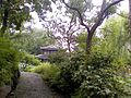Humble Administrator's Garden 2013-09-11 11-11-55.jpg