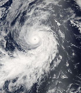 Hurricane Darby (2004) Category 3 Pacific hurricane in 2004