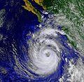 Hurricane Nora (1997) GOES.JPG