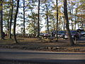 Hyner View State Park Picnicand Parking.jpg
