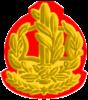 IDF RASAB Yam.png