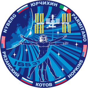 Expedition 37 - Image: ISS Expedition 37 Patch