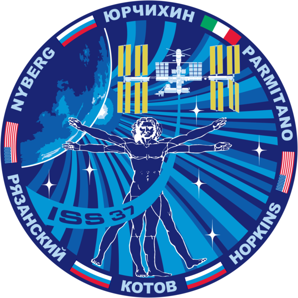 Soubor:ISS Expedition 37 Patch.png