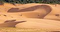 I love the lines and curves in these dunes (8078506912).jpg