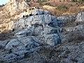 Il Gigante della V.Rosandra - panoramio.jpg