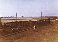 Impreza kolejowa z Tx-1112 z Nakła nad Notecią przez Kasprowo do Koronowa. 27.9.1992r. (Karnowo).jpg