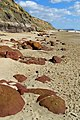 Ironstone boulders on the beach, Hengistbury Head - geograph.org.uk - 734321.jpg
