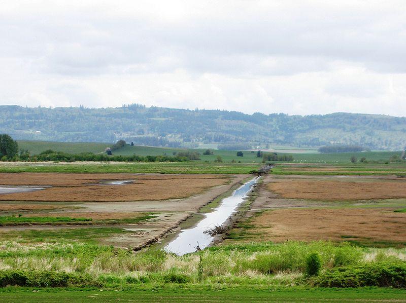 File:Irrigation ditch.JPG