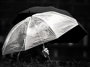 Its rain (37939239074).jpg