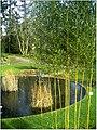 January Frost Botanic Garden Freiburg - Master Botany Photography 2014 - panoramio (12).jpg