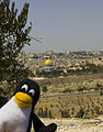 Jerusalem- Penguin's been here! (3160137457).jpg