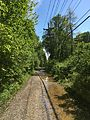 Johnson Trolley Line Trail.jpg