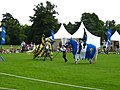 Jousting event on the South Lawn - geograph.org.uk - 1433103.jpg