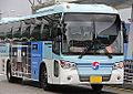 KAL Limousine at ICN.jpg