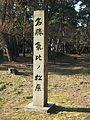 Kehi-no-Matsubara of beauty spots.jpg