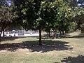 Kessler, Dallas, TX, USA - panoramio (3).jpg