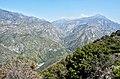 Kings Canyon P4270967.jpg