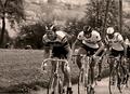 Kirschblütenrennen 1977 Bergwertung Mistelbacherberg.png