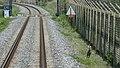 Korea DMZ Train 13 (14245207481).jpg