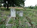 Koronowo - cmentarz ludności żydowskiej - panoramio (24).jpg