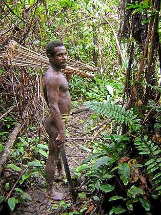 New Guinea - Korowai tribesman