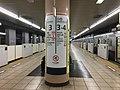Kotakemukaihara Ststion platforms Ginza line Nov 15 2020 various 12 02 29 402000.jpeg