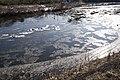 Kuji River 57.jpg