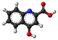 Ball-and-stick model of kynurenic acid