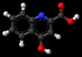 Kynurenic acid - Image: Kynurenic acid molecule ball