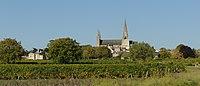 L'Eglise du Puy-Notre-Dame dans le vignoble. DSC 1889.jpg