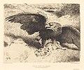 Léon Bonnat, Aigle Liant un Lièvre (An Eagle Pouncing on a Hare), NGA 86068.jpg