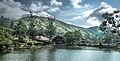 Lago Barão de Javary.jpg