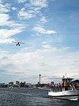 Lake Union - Seaplane and Ship (2873458435).jpg