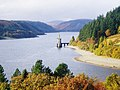 Lake Vyrnwy Tower - geograph.org.uk - 1182130.jpg