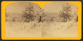 Landscape, Winter, from Robert N. Dennis collection of stereoscopic views 5.png