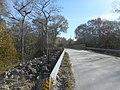 Lanier Bridge WRCP; Green Swamp West.jpg