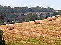 Late straw bales against Brunel's viaduct, Broadsands - geograph.org.uk - 973169.jpg