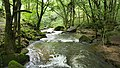 Latouille-Lentillac Gorge (35876341081).jpg