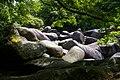 Les beaux rochers des Gorges du Corong.JPG
