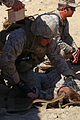 Lifesaving hands, CLB-6 Marines complete first-responder training 130511-M-ZB219-007.jpg