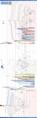 LinuxDistroTimeline-2010-24-05.png