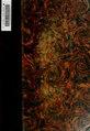 Lista alfabética y por materias de las papeletas que para la redacción de un catálog se encontraron en la biblioteca del Exemo. Señor D. Antonio Cánovas del Castillo .. (IA listaalfabtica02cano).pdf