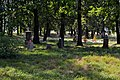Liubeshiv Volynska-Polish cemetery-view-2.jpg