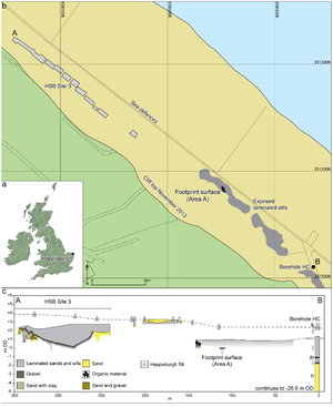 Happisburgh footprints - Plan of the Happisburgh site, showing exposed and recorded foreshore sediments, and location of the footprint surface