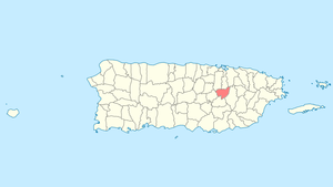 Location of Aguas Buenas within Puerto Rico