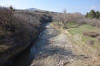 Lochini (Didi Lilo-Norio road) 1.JPG