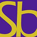 Logo for Switchback Literary Journal.jpg
